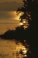 Lake Memphamagog 1 Fine Art Print