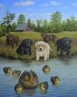 Puppies And Ducklings Fine Art Print