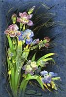 Flowers in the Rain Fine Art Print