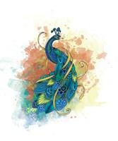 Mr Peacock Fine Art Print