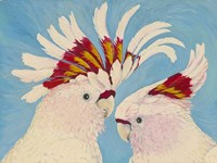 Major Mitchell's Cockatoos Fine Art Print