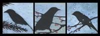 Winter Bird Triptych Fine Art Print