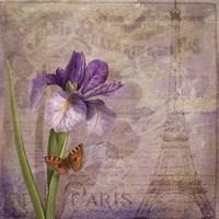 Ville de Paris I Fine Art Print
