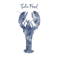 Lobster Tide Pool Fine Art Print
