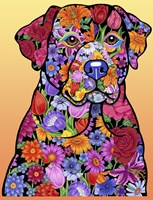 Flower Black Lab Fine Art Print