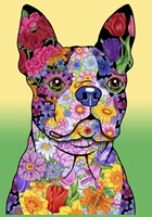 Flowers Boston Terrier Fine Art Print
