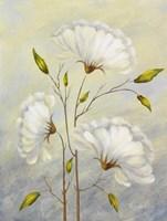 Cream I Fine Art Print