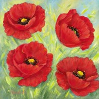 Poppies A Fine Art Print