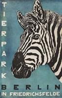 Berlin Zebra Fine Art Print