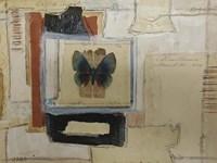 Paper Butterfly Fine Art Print