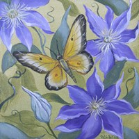 Large Butterfly and Clematis Fine Art Print