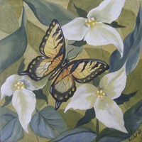 Large Butterfly and Trillium Fine Art Print
