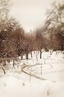 Central Park in Winter Fine Art Print