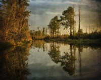 Swamp Land 1 Fine Art Print