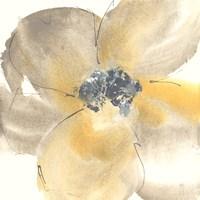 Flower Tones II Fine Art Print