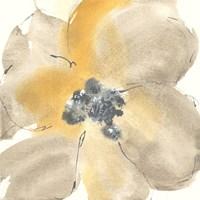 Flower Tones I Fine Art Print