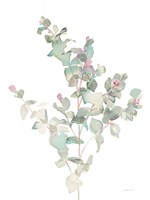 Eucalyptus II White Fine Art Print