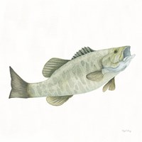 Gone Fishin Small Mouth Fine Art Print
