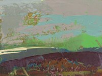 Ceide Study XVI Fine Art Print