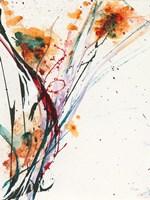 Floral Explosion II Fine Art Print