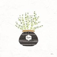 Fine Herbs VI Framed Print