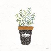Fine Herbs IX Framed Print