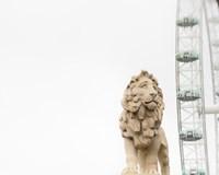 Lion of London Fine Art Print