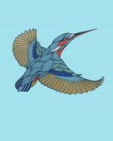 Kingfisher Fine Art Print