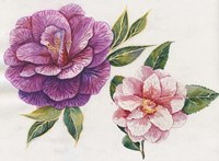 In Bloom Fine Art Print