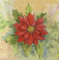 Poinsettia 1 Fine Art Print
