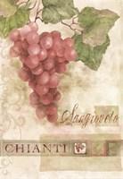 Chianti Sangioveto 2 Fine Art Print