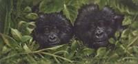 Buddies Fine Art Print