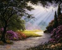 Bright Rays Fine Art Print