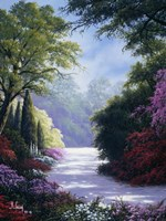 Scenic Path Fine Art Print