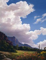 Clouds Above Fine Art Print