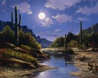 Desert Splendor Fine Art Print