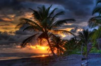 Tropical Sunset Fine Art Print