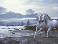 Cold Mountain Fine Art Print