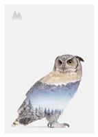 Snow Owl I Fine Art Print