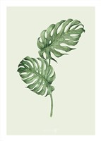 Leaf Green Fine Art Print