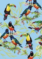 Jungle Birds Fine Art Print