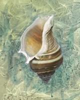 Calling from the Sea I Fine Art Print