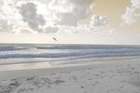 Serene Sea I Fine Art Print