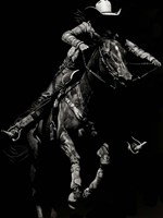 Scratchboard Rodeo IV Framed Print