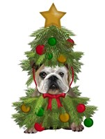 English Bulldog, Christmas Tree Costume Fine Art Print
