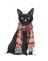 Black Cat, Red Scarf Fine Art Print