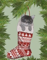 Grey Kitten in Christmas Stocking Fine Art Print