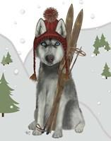 Husky Skiing Fine Art Print