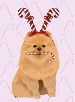 Pomeranian and Candy Canes Fine Art Print