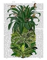 Pineapple, Monkeys Fine Art Print